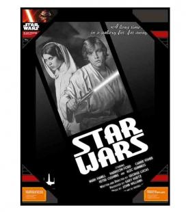 Luke y Leia blanco y negro póster de vídrio Star Wars 30x40 cm