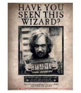 Has visto a este mago Sirius Póster de Vídrio 30x40
