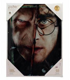 Harry y Voldemort Deathly Hallows 30x40