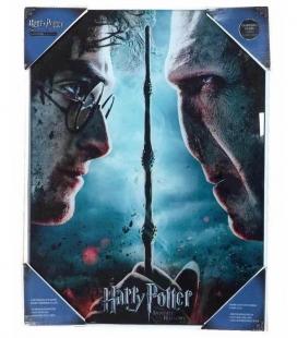 Harry Potter y Voldemort Póster de Vídrio 30x40