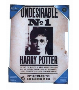 Indeseable Nº1 Poster de vidrio Harry Potter 30x40